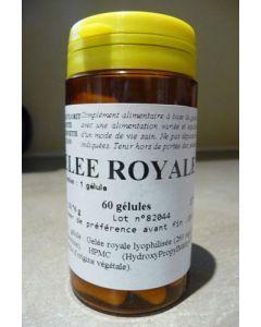 Florit Gelée royale 60 gélules