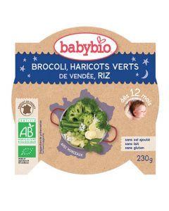 Babybio Assiette Bonne Nuit Brocoli, Haricots Verts, Riz Biologique dès 12 Mois 230g