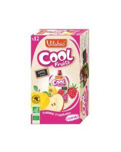 Vitabio Cool Fruits Pomme Framboise Bio Gourde 12x90g