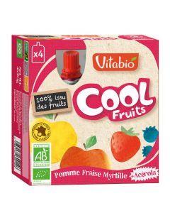 Vitabio Cool Fruits Pomme Fraise Myrtille Bio Gourde 4x90g