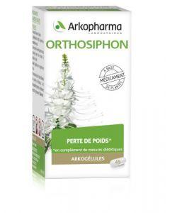 Arkopharma Arkogélules Orthosiphon 45 gélules