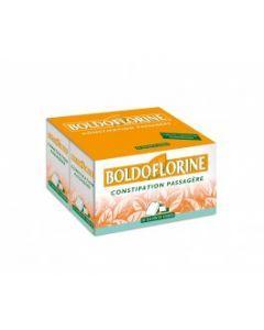Boldoflorine mélange de plantes pour tisane en sachet dose 50