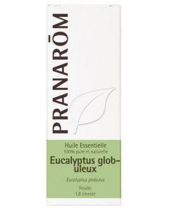 Pranarôm Huile Essentielle Eucalyptus Globuleux 10 Ml