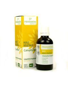 Pranarôm Huile Végétale Calophylle Bio 50ml