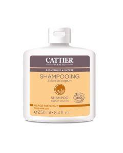 Cattier Shampooing Usage Fréquent Yogourt 250ml