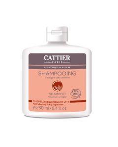 Cattier Shampooing Cheveux Regraissant Vite Vinaigre de Romarin 250ml