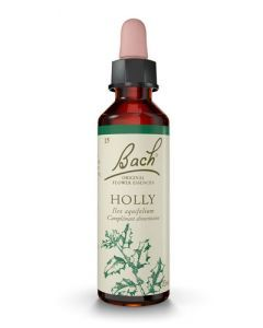 Fleurs de Bach Holly 20ml