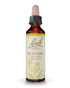 Fleurs de Bach Mustard 20ml