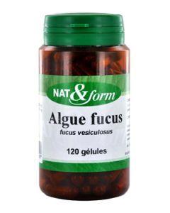 Nat&Form Algue Fucus 120 Gélules
