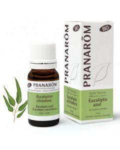 Pranarôm Huile Essentielle Bio Eucalyptus Citronné 10ml