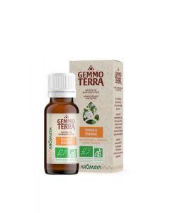 Gemmo Terra Tonus & Énergie Bio 30 ml
