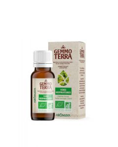 Gemmo Terra Sinus & Voies Respiratoires Bio 30 ml