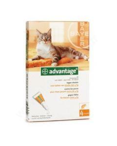 Advantage 40 Solution Anti-Parasitaires pour Chats 6 Pipettes