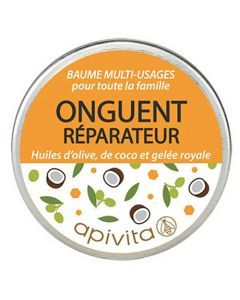 Apivita Onguent Pot 15gr