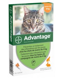Advantage 40 Solution Anti-Puces pour Chat et Lapin 6 Pipettes