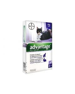 Bayer Advantage 80 Solution Antipuce Pour Chat et Lapin de 4kg + 6 Pipettes