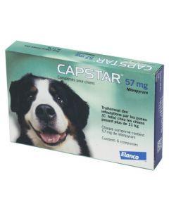 Capstar 57 mg Traitement des Infestations par les Puces Chiens de +11 kg