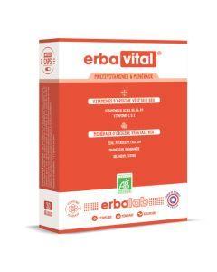 Erbalab Erbavital Boîte De 30 Gélules