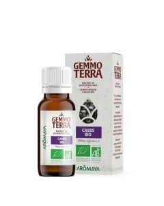 Gemmo Terra Cassis Bio 30 ml