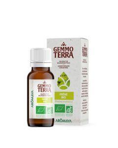 Gemmo Terra Frêne Bio 30 ml