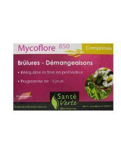 Santé Verte Mycoflore 850 30 Comprimés