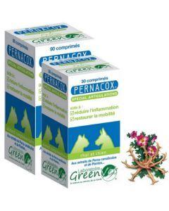 Greenvet Pernacox Spécial Articulations Chat et Chien 30 Comprimés