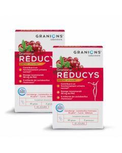 Granions Reducys Confort Urinaire 30 Gelules Lot de 2