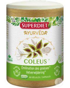 Superdiet Phyto Coleus 60 gélules