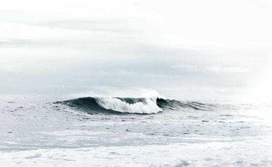 Ces bêtes qui piquent à la plage : les méduses, les vives, les oursins.…